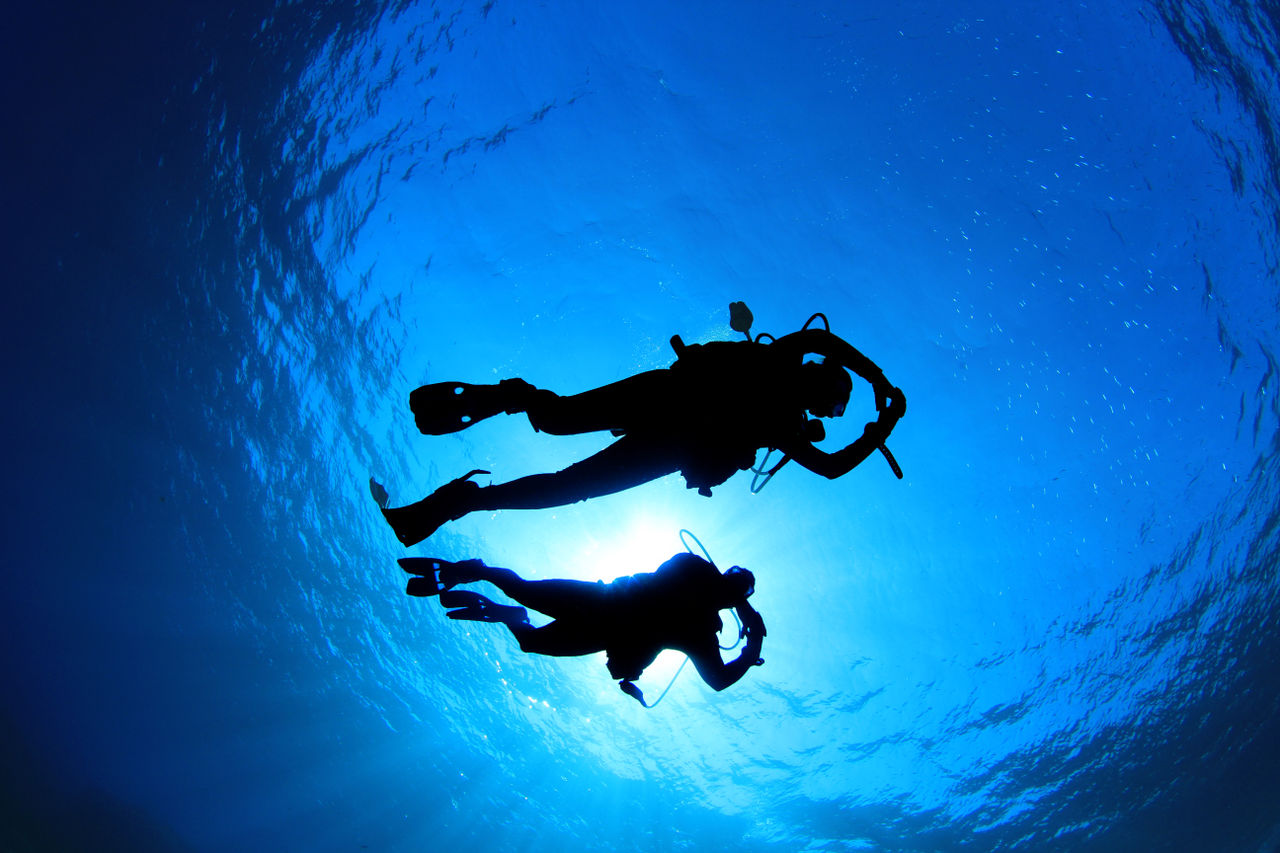 Diving in Fraile