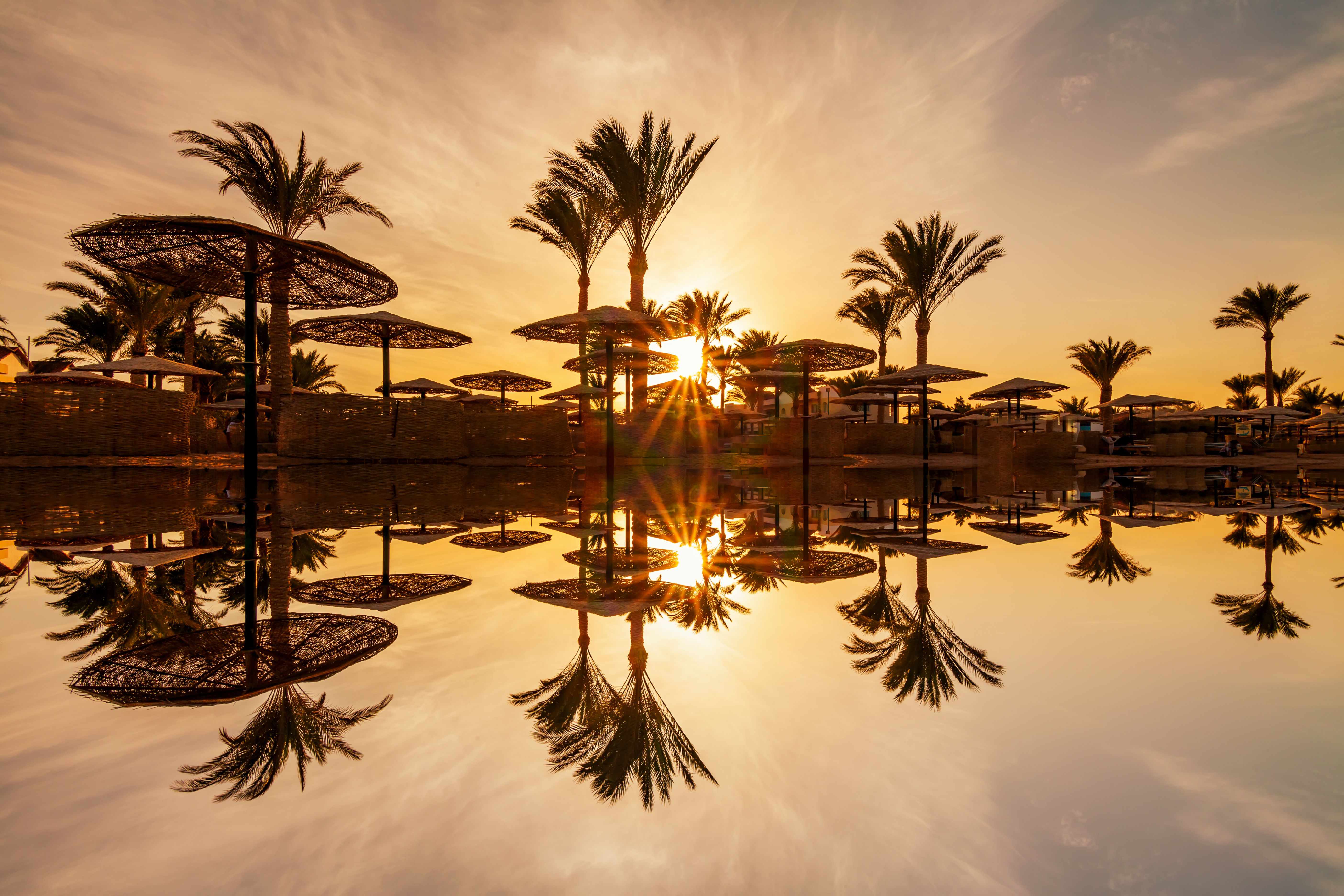 Sunset through palm trees over the Red Sea in Hurghada