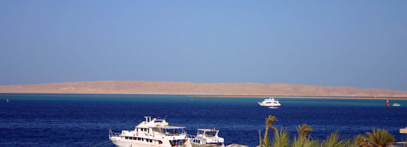 White tour boats moored in Red Sea harbour in Egypt with blue sea and palm trees.