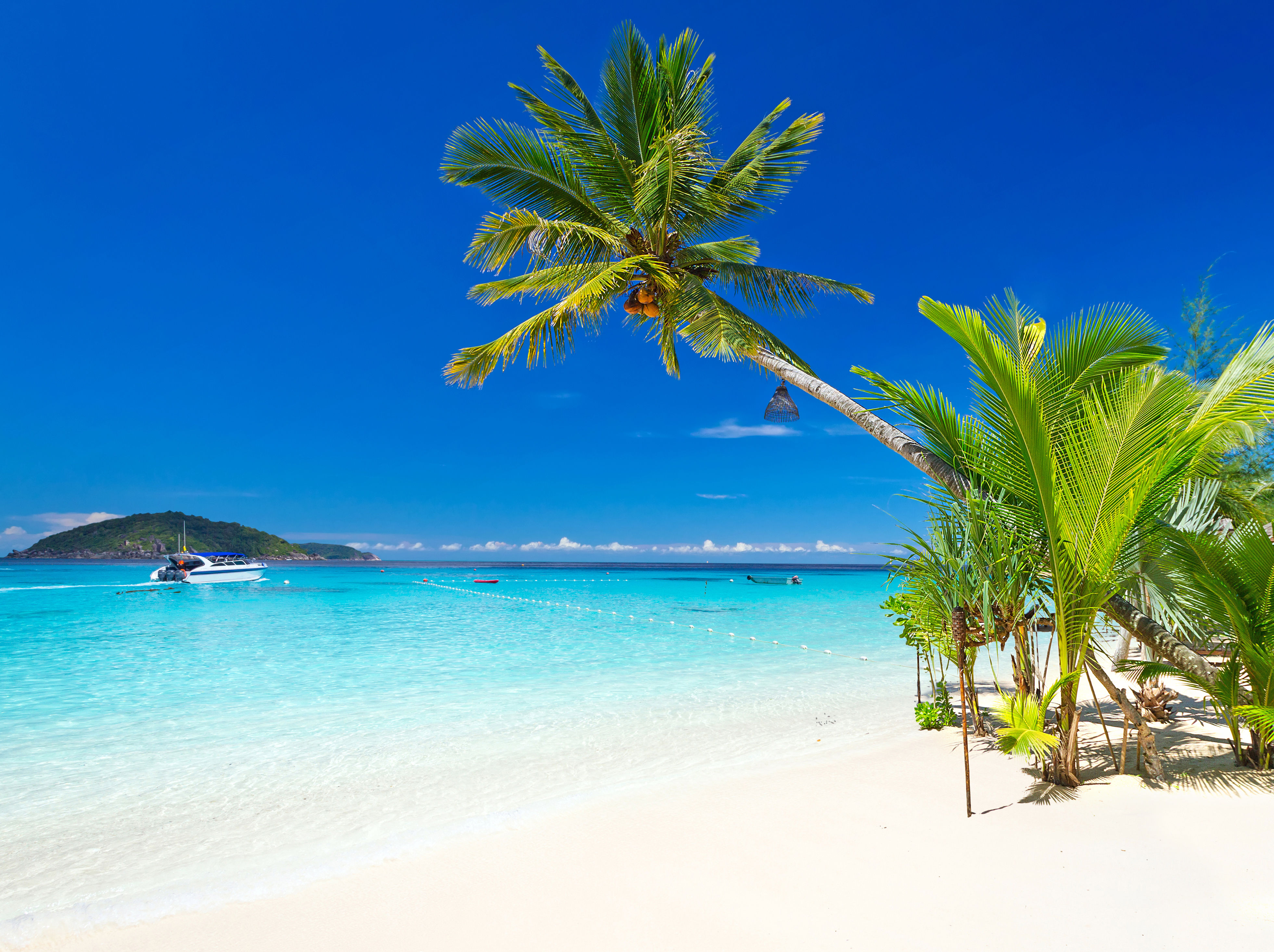 Palm tree overhanging white beach next to turquoise waters and islands in Jamaica.