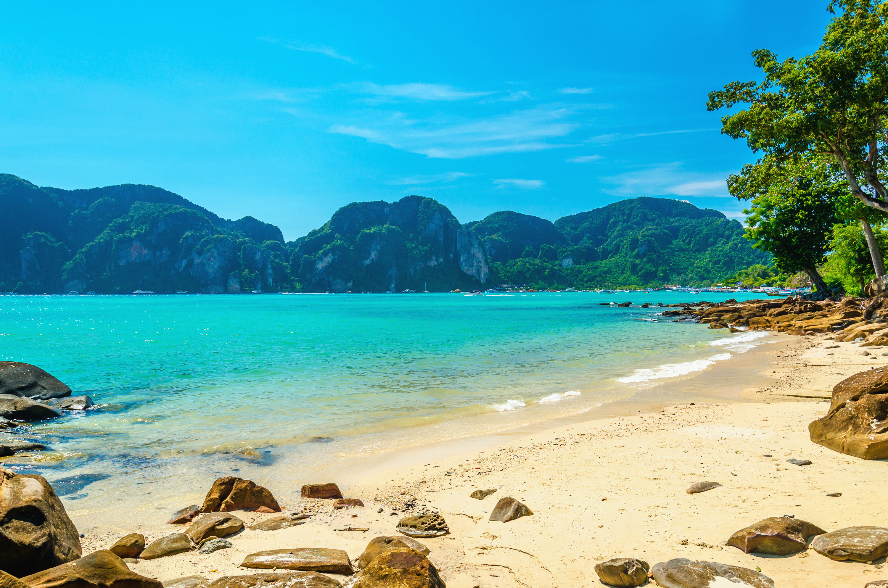 Sandy beach with trees, clear blue waters and green hills in the background.