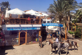 Red Sea Relax Diving Resort